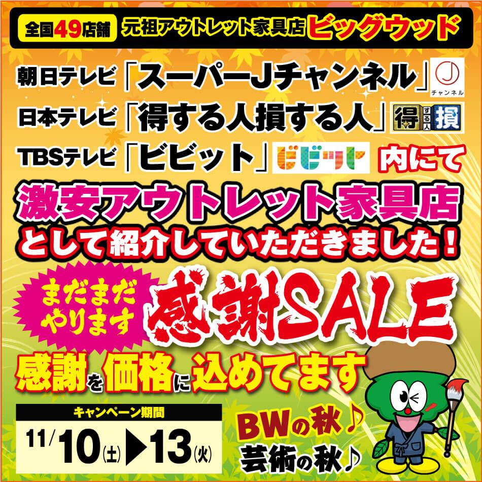 11月10日(土)~13日(火)はまだまだやります特別感謝セール!